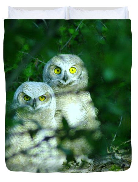 Two Young Owls Duvet Cover by Jeff Swan