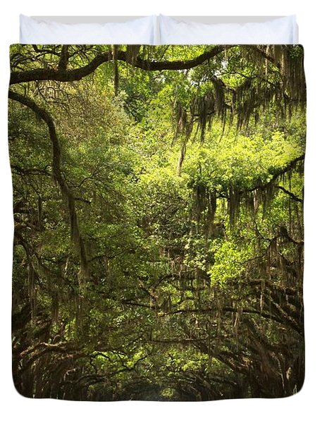 Under The Ancient Oaks Duvet Cover by Adam Jewell
