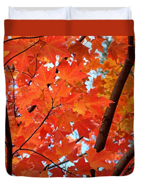 Under The Orange Maple Tree Duvet Cover by Rona Black