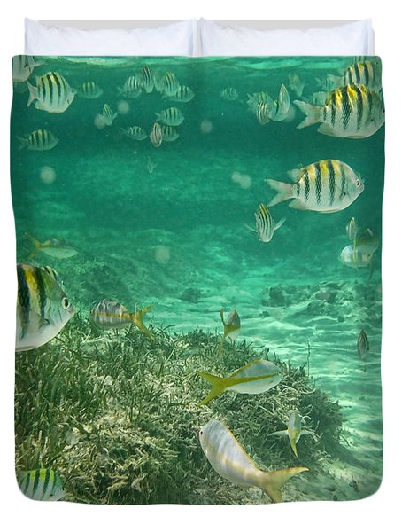 Under The Sea Duvet Cover by Peggy Hughes