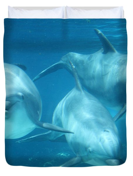 Underwater Dolphin Encounter Duvet Cover by David Nicholls