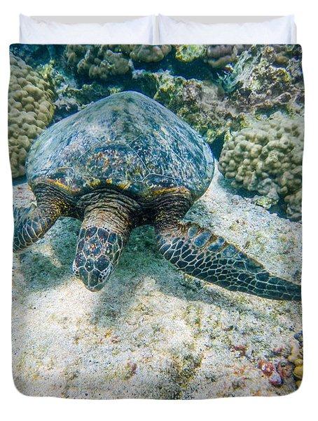 Swimming Turtle Duvet Cover