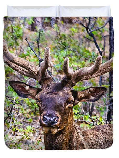 Duvet Cover featuring the photograph Up Close And Personal With An Elk by Bob and Nadine Johnston