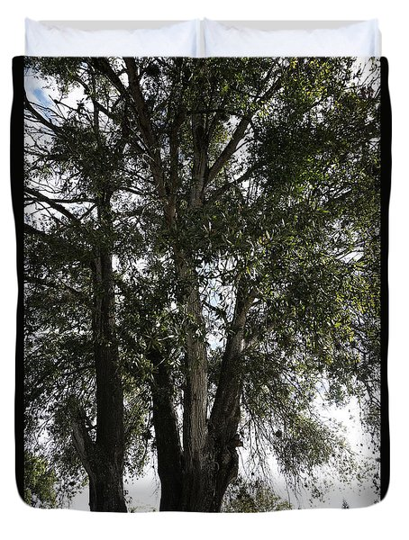 Up-view Of Oak Tree Duvet Cover