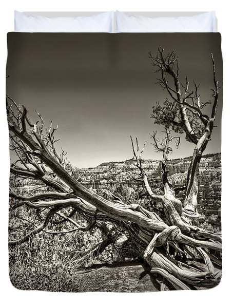 Duvet Cover featuring the photograph Uprooted - Bryce Canyon Sepia by Tammy Wetzel