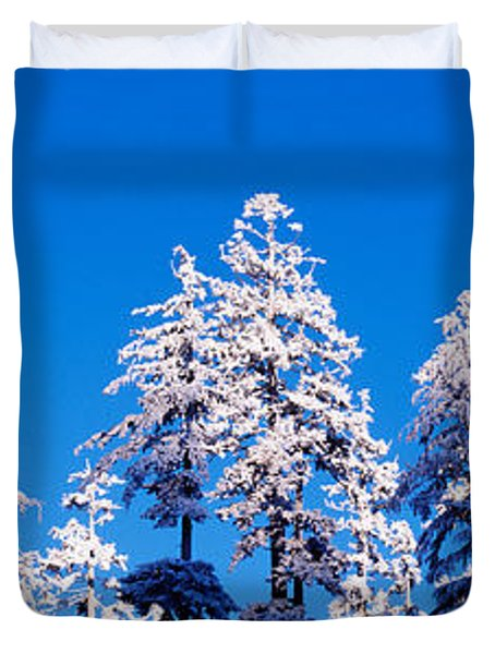 Usa, Oregon, Pine Trees, Winter Duvet Cover