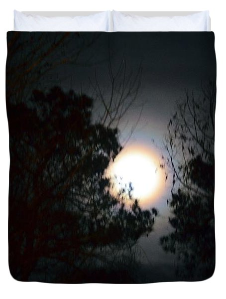 Valley Of The Moon Duvet Cover by Maria Urso