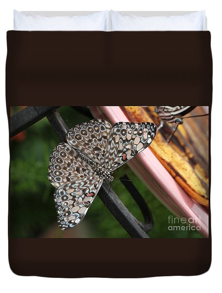 Duvet Cover featuring the photograph Variable Craker Butterfly #2 by Judy Whitton