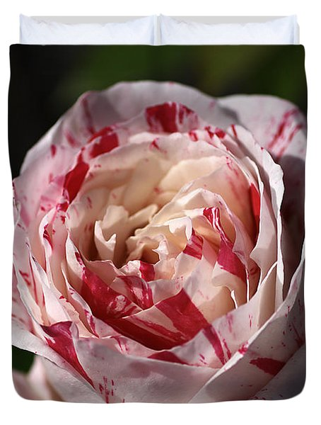 Duvet Cover featuring the photograph Variegated Rose by Joy Watson