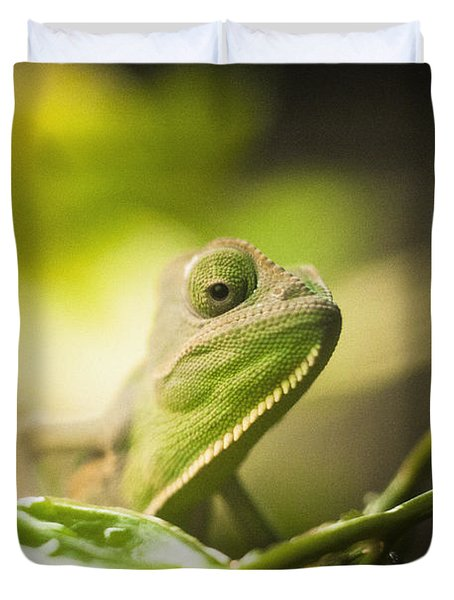 Veiled Chameleon Is Watching You Duvet Cover by Bradley R Youngberg