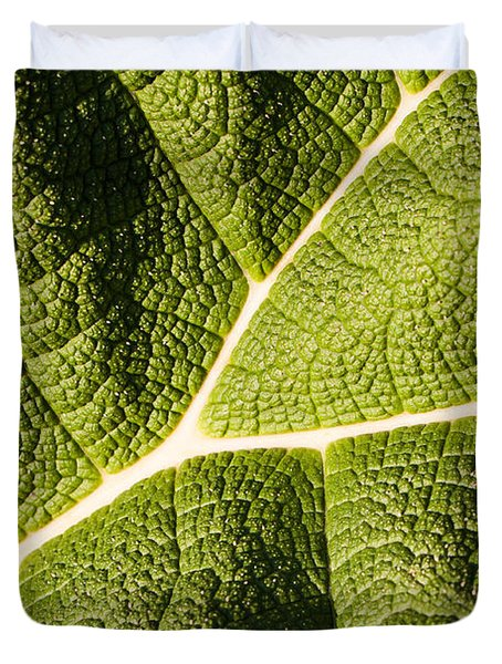 Veins Of A Leaf Duvet Cover