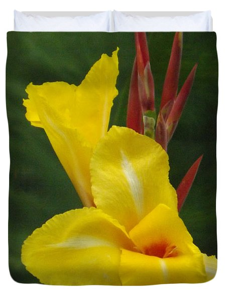 Velvety Yellow Iris  Duvet Cover by Brenda Brown