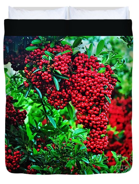Very Berry Duvet Cover by Kaye Menner