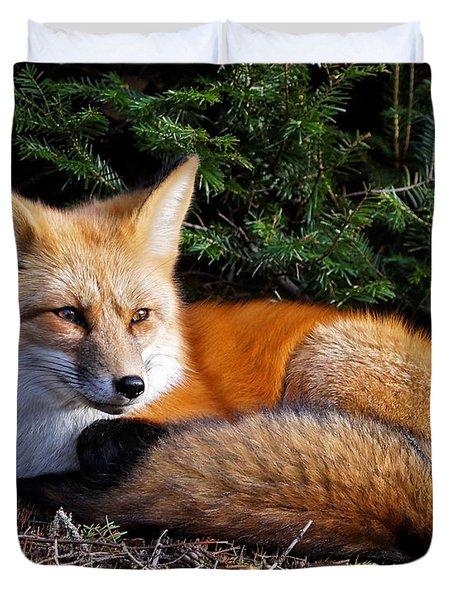 Vested Fox Duvet Cover