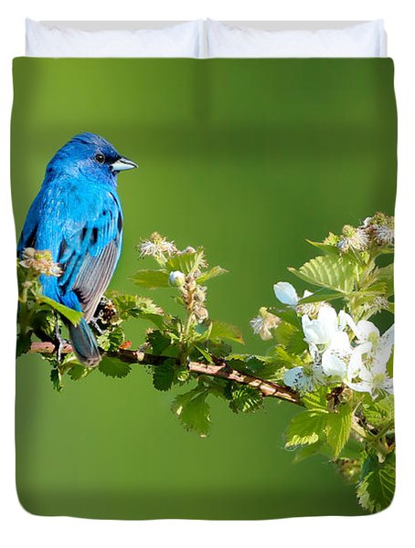 Vibrance Of Spring Duvet Cover
