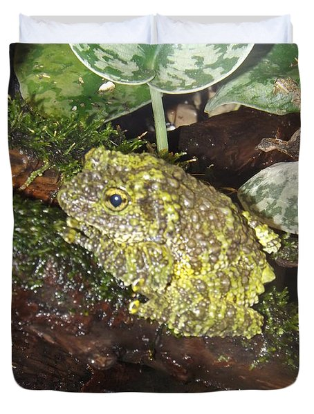 Vietnamese Mossy Frog Duvet Cover by Sara  Raber