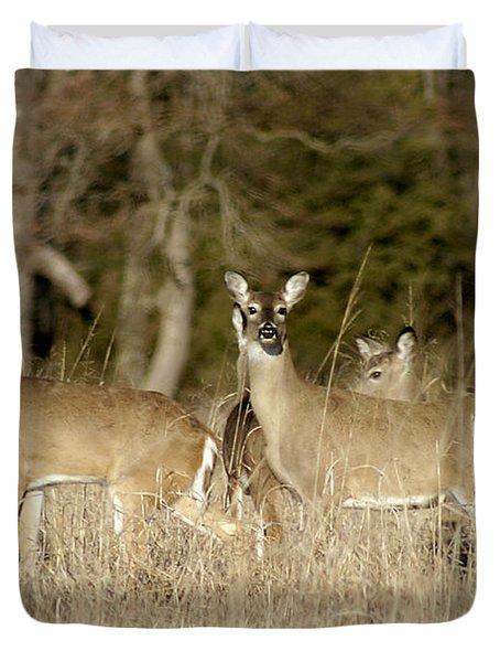 Vigilant White-tailed Deer Duvet Cover