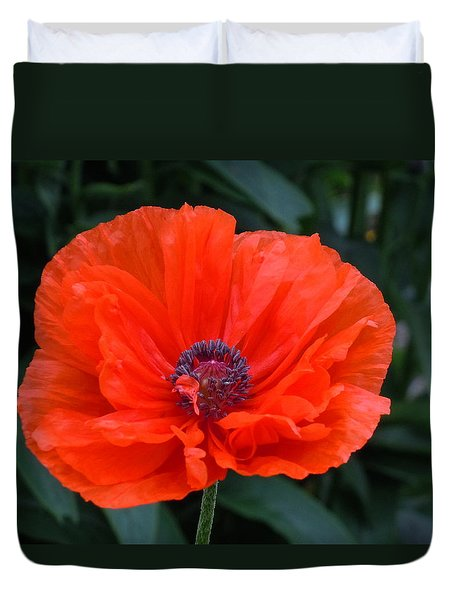 Duvet Cover featuring the photograph Village Poppy by Francine Frank