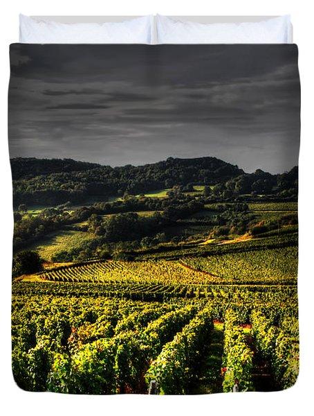 Vines In France Duvet Cover