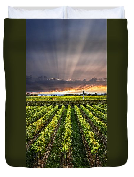Vineyard At Sunset Duvet Cover