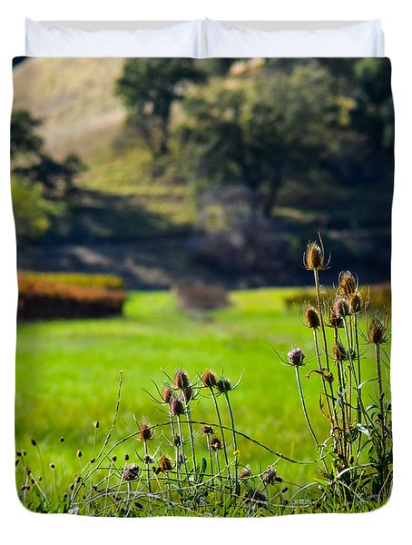 Vineyard Thistles Duvet Cover by CML Brown