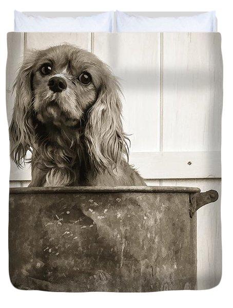 Vintage Puppy Bath Duvet Cover by Edward Fielding