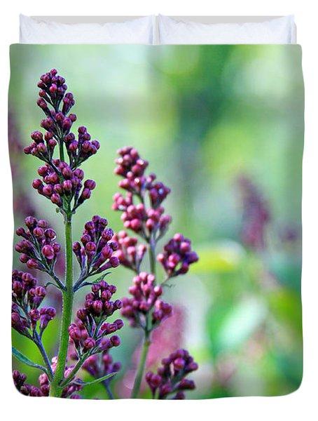 Violet Lilacs Budding Duvet Cover by Karon Melillo DeVega