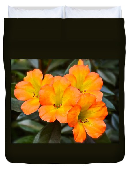 Vireya Rhododendron Duvet Cover by Venetia Featherstone-Witty