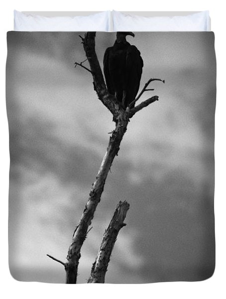 Vulture Silhouette Duvet Cover by Bradley R Youngberg