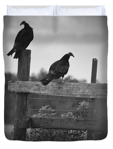 Vultures On Fence Duvet Cover by Bradley R Youngberg