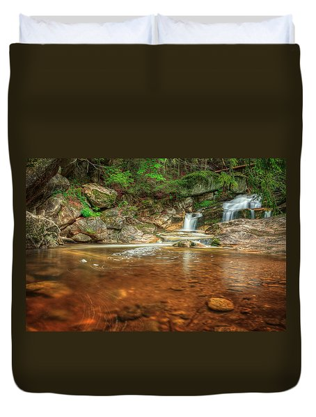 Wading Pool Duvet Cover by Bill Wakeley