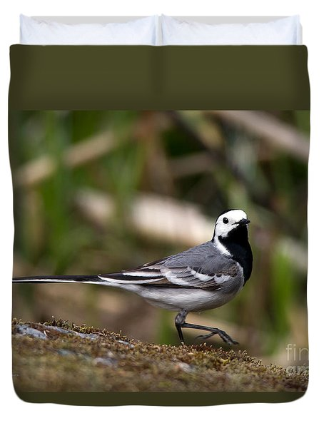 Wagtail's Step Duvet Cover