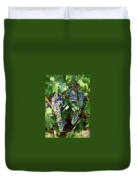Waiting For Wine Duvet Cover by Carol Groenen
