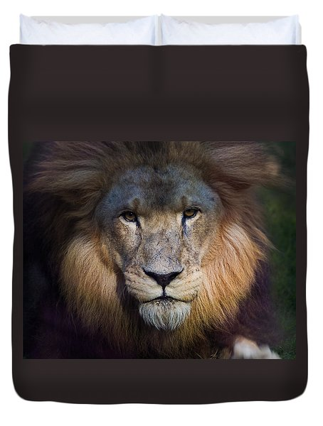 Waiting In The Shadows Duvet Cover by Tim Stanley