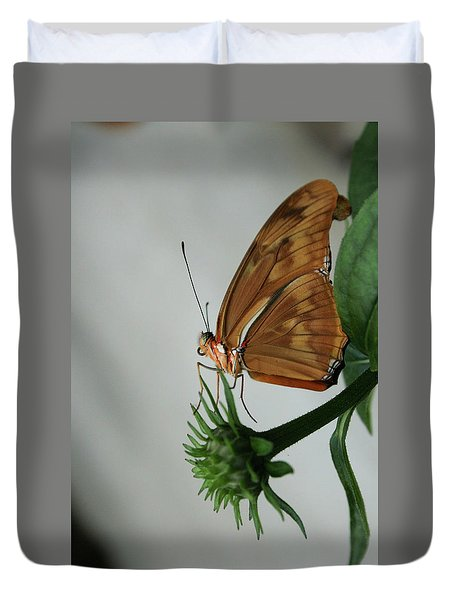 Butterfly Waiting On The Wind  Duvet Cover by Cathy Harper