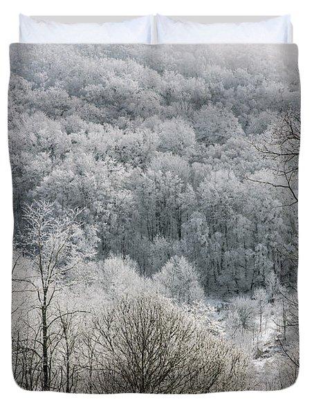 Waiting Out Winter Duvet Cover by John Haldane