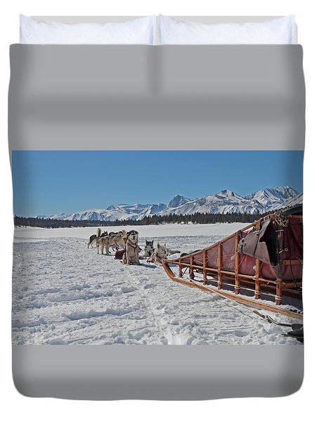 Waiting Sled Dogs  Duvet Cover by Duncan Selby