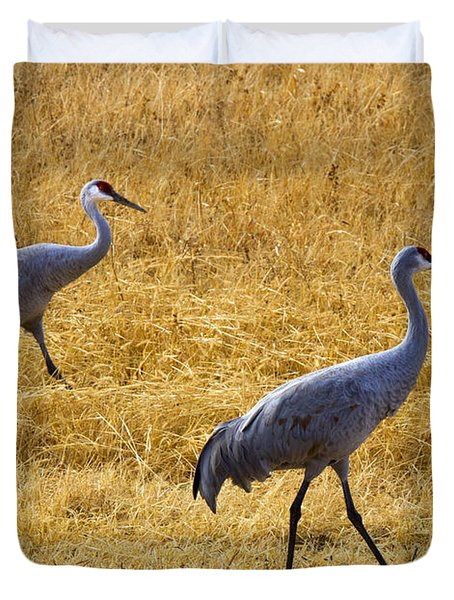 Walk This Way Duvet Cover by Mike Dawson