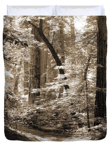 Walking Through The Redwoods Duvet Cover by Mike McGlothlen