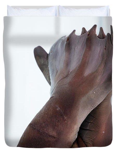 Walrus Rear Flippers, Odobenus Duvet Cover
