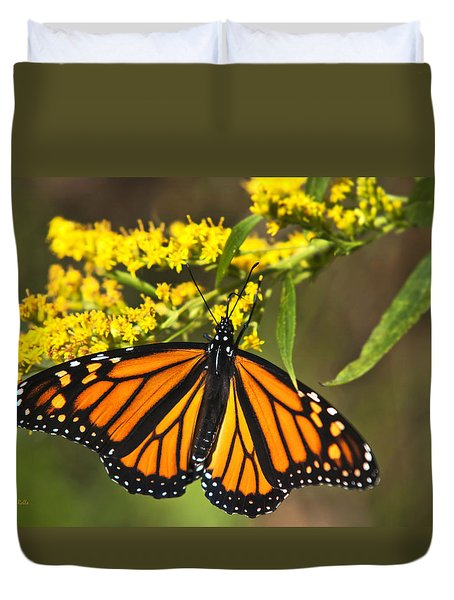 Duvet Cover featuring the photograph Wandering Migrant Butterfly by Christina Rollo