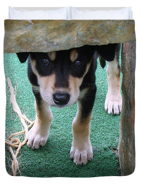 Wannabe Sled Dog In The Yukon Duvet Cover by Richard Rosenshein