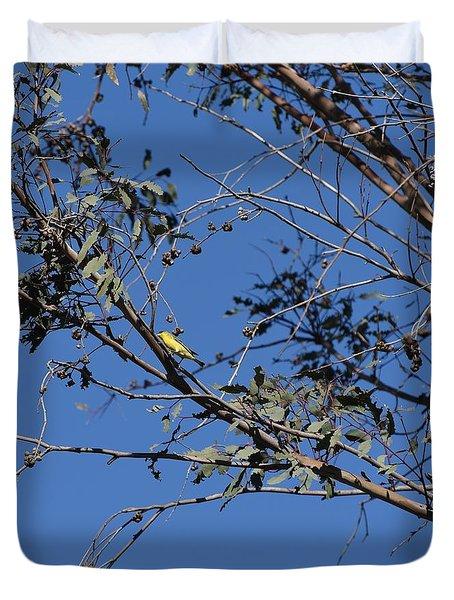 Warbler In Tree Duvet Cover