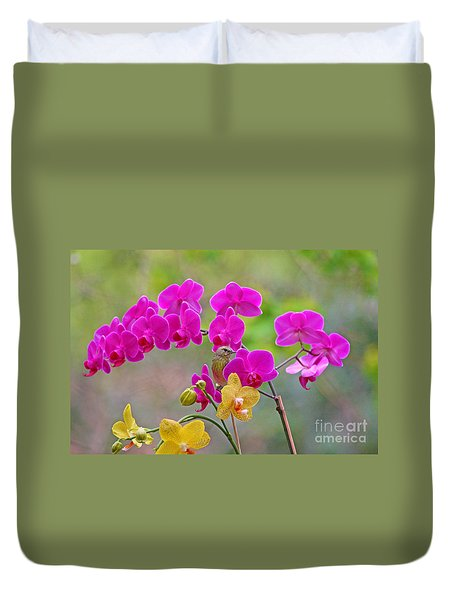 Warbler Posing In Orchids Duvet Cover