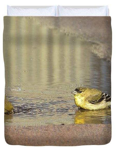 Warblers Bathing Duvet Cover