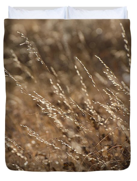 Warm Light On A Winter's Day Duvet Cover by Dee Cresswell
