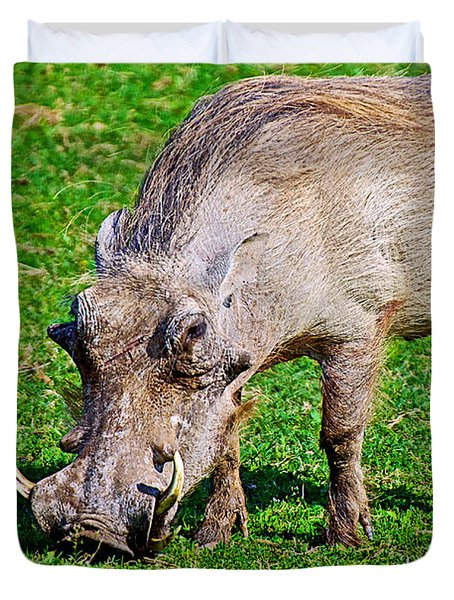 Warthog In Addo Elephant Park Near Port Elizabeth-south Africa  Duvet Cover