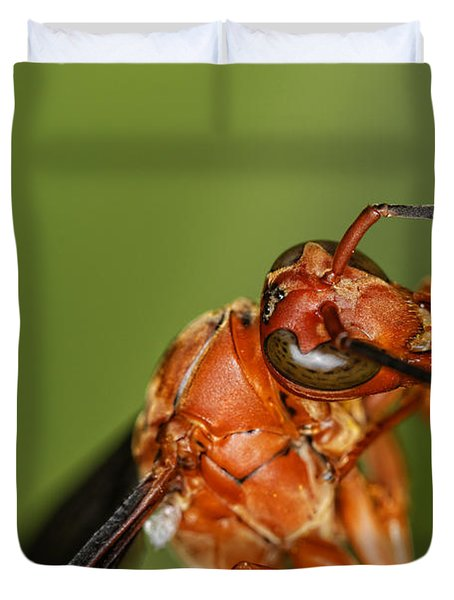 Wasp 1 Duvet Cover