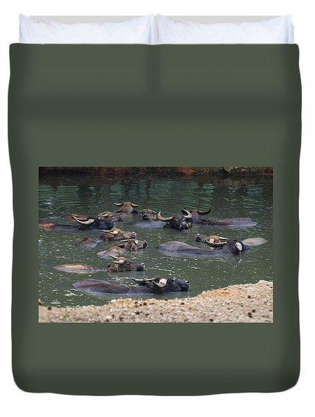 Water Buffalo Duvet Cover by Chris Flees
