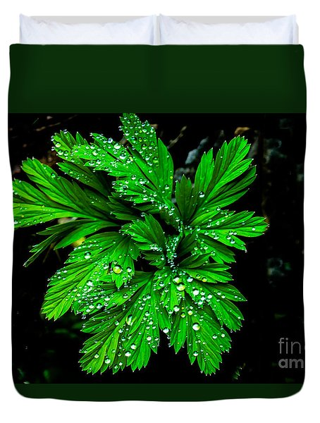 Water Drops Duvet Cover by Robert Bales